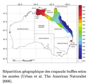 Invasion des crapauds-buffles  en Australie