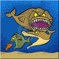 L'histoire du modèle proie-prédateur ou la mathématique des poissons