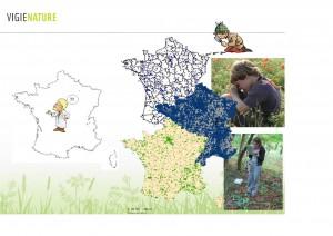 Combien de biodiversité avons-nous perdu en France en 50 ans ?