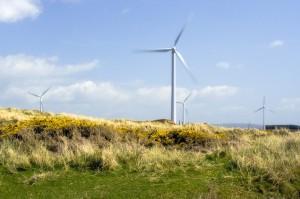 Energie propre et renouvelable : des générateurs à la hauteur !