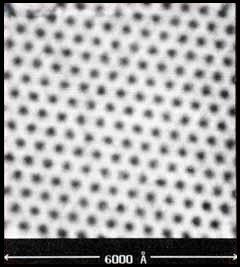 Réseau de vortex dans un supraconducteur