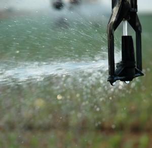 Recycler les eaux usées pour l'irrigation
