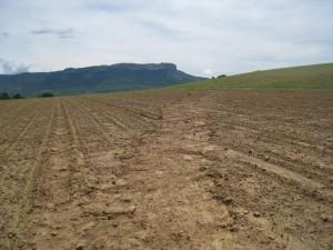 Erosion des sols agricoles : que d'eau !!!