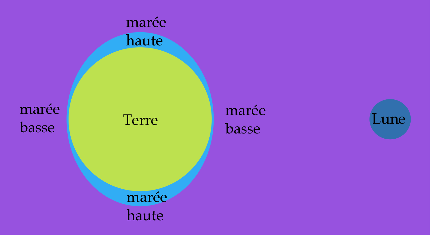 les marees explication simple