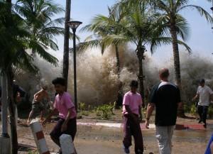 Tsunami : reconstruire la vague